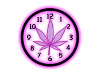 How Long Marijuana can be Detected in Your System (World's #1 Resource)
