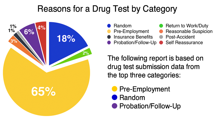State Breakdown Analysis of Drug Test Discrimination and Ethnicity
