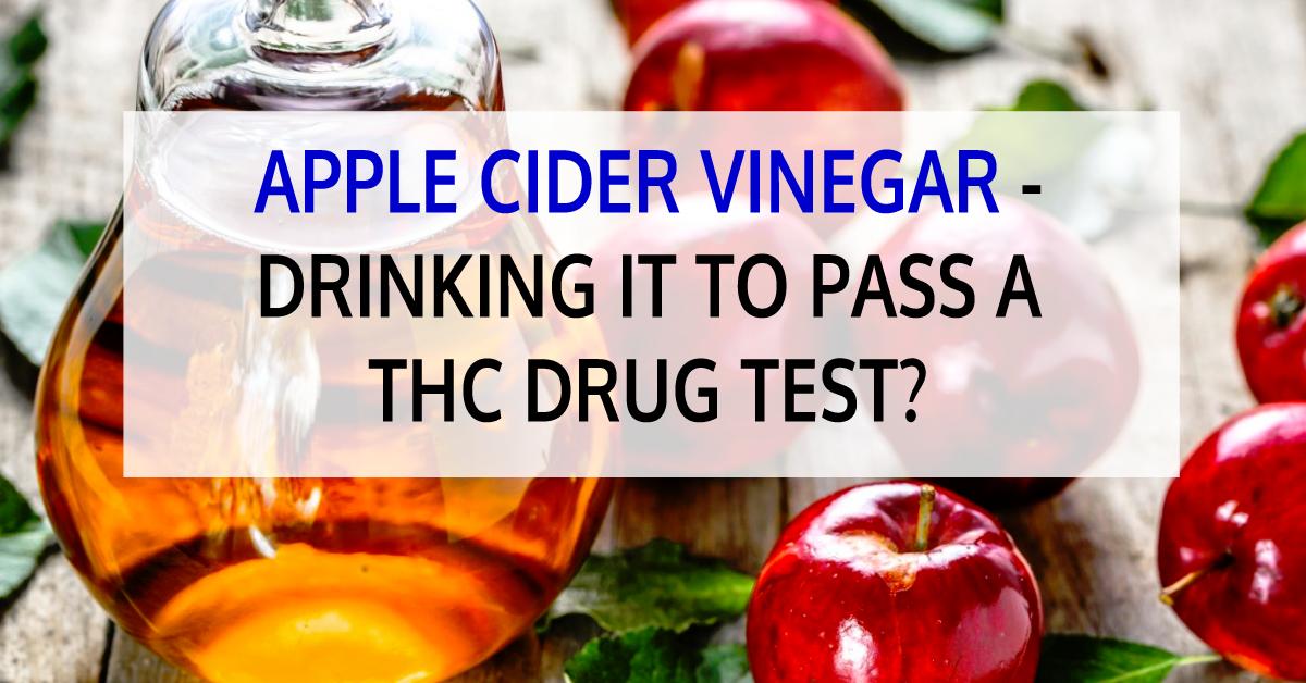 Apple Cider Vinegar Drinking It To Pass A Thc Drug Test