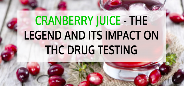 Cranberry Juice – The Legend and its Impact on THC Drug Testing