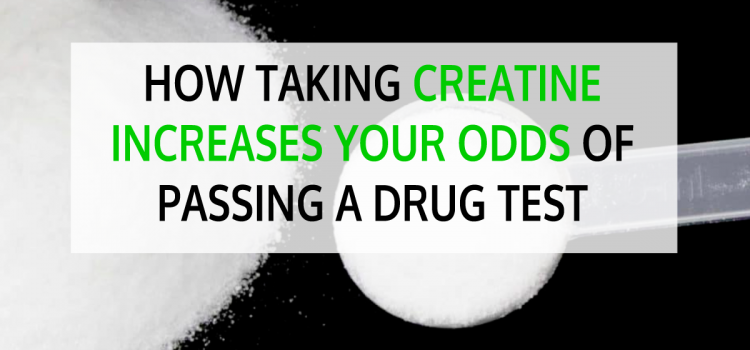 How Taking Creatine Increases Your Odds of Passing a Drug Test