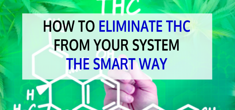 How to Eliminate THC from Your Body the Smart Way
