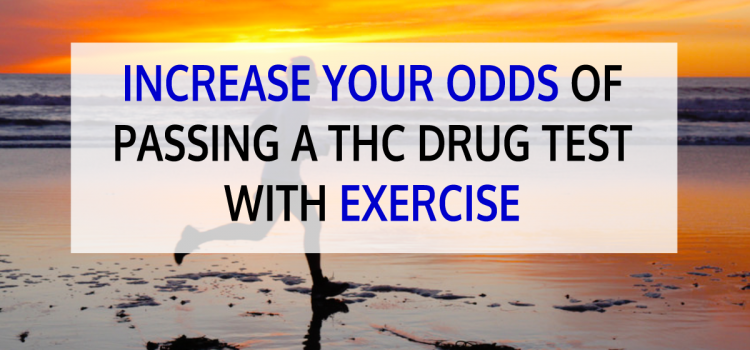 Increase Your Odds of Passing a THC Drug Test with Exercise