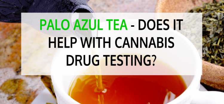 Palo Azul Tea – Does it Help with Cannabis Drug Testing?