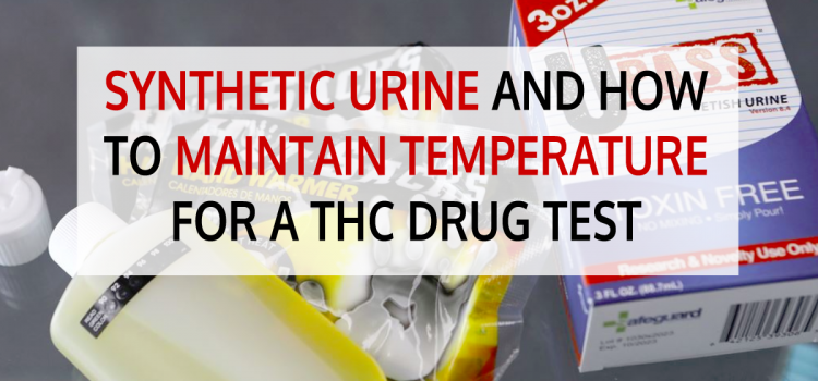 Synthetic Urine and How to Maintain Temperature for a THC Drug Test