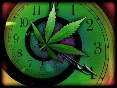 How Long THC Detection in Body/System