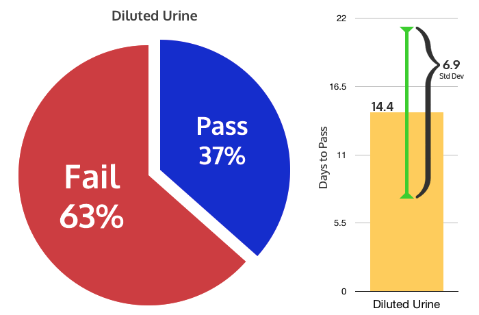 Diluted Urine