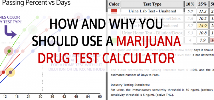 How and Why You Should Use a Marijuana Drug Test Calculator